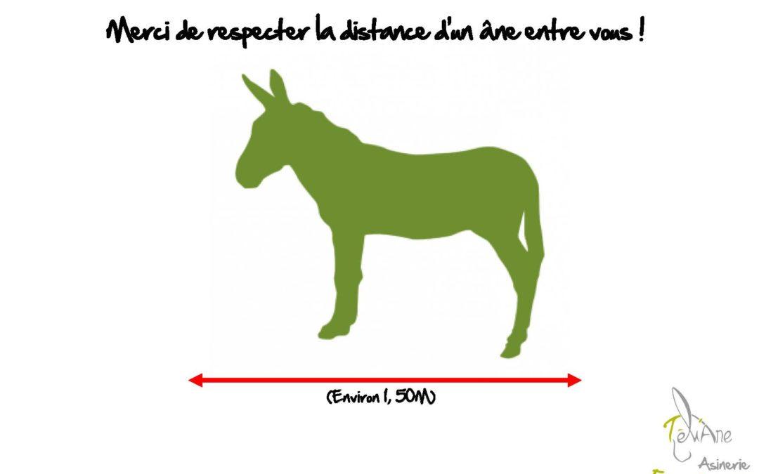 Informations Coronavirus/covid